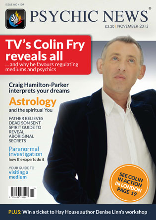 Magazine 43 November 2013 issue (Issue No 4109)